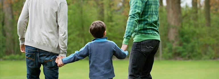 gay adoption legislation