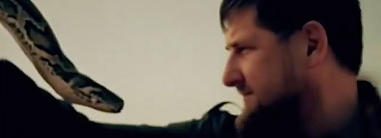 Ramzan Kadyrov with a snake in front of his face to symbolise the deception which Russia appears to be presenting to the world after its investigation of how Chechnya is treating gay men found that there were no victims