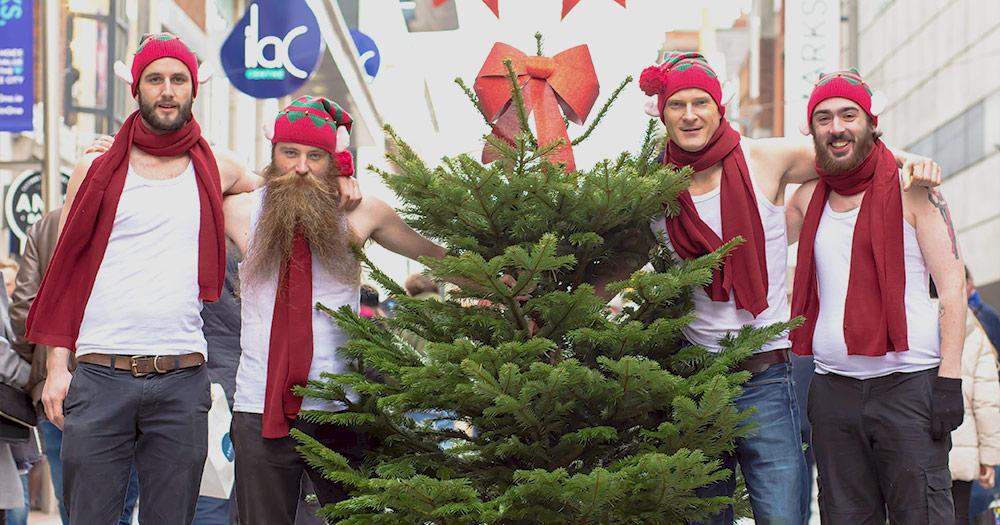 Fir-Christmas-Tree-promo
