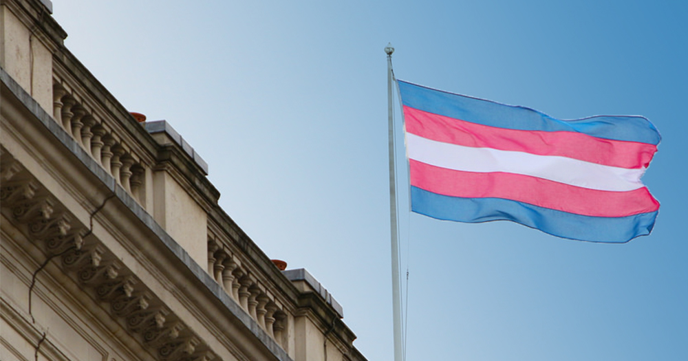 support-transgender-healthcare-protest-leinster-house
