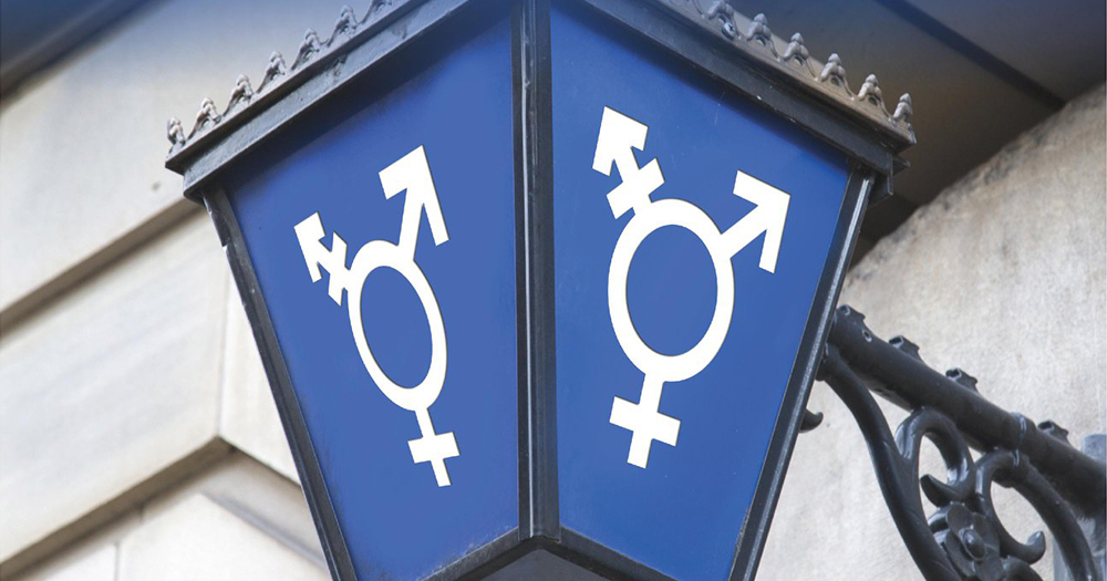 Lower Levels Of Confidence In Gardaí Among Ireland's Trans Community, Report FindsGarda sign with gender symbols