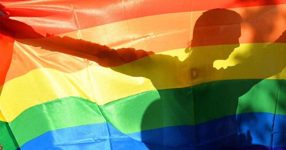 shadow of person behind pride flag adoption