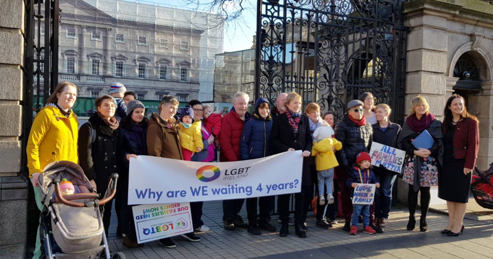 A large group of LGBT+ parents and their children protest outside the Dáil