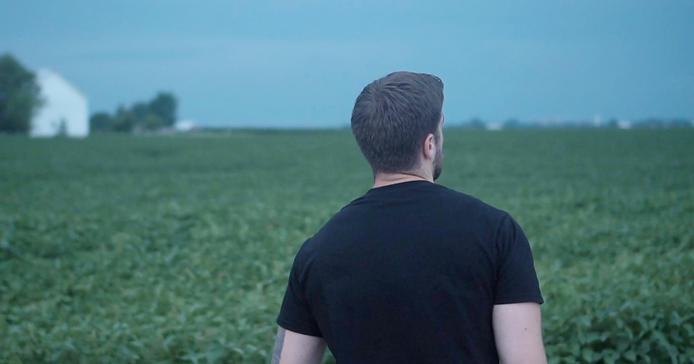 A young man from behind looking out over a field of grass