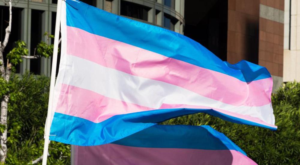 South Dublin County Council passes motion to fly trans flag every year