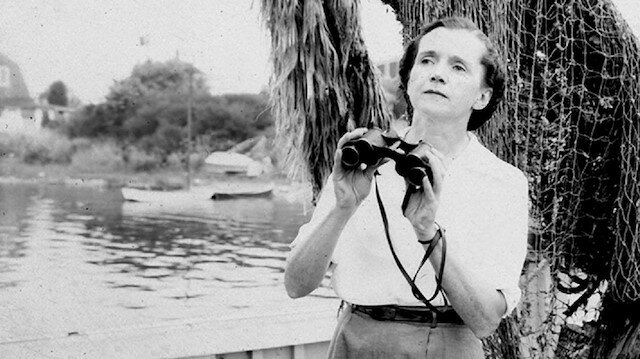 A woman standing by a pond with binoculars