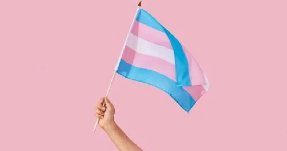 A hand holding a trans pride flag