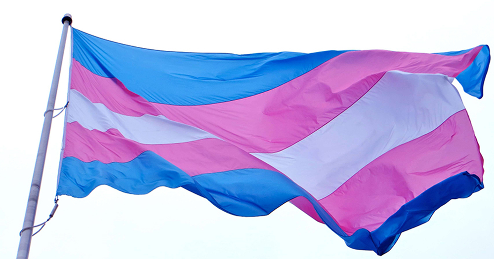The trans flag blowing in the wind