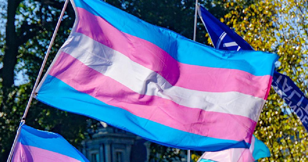 LGBTQ+ trans Poland trans flag