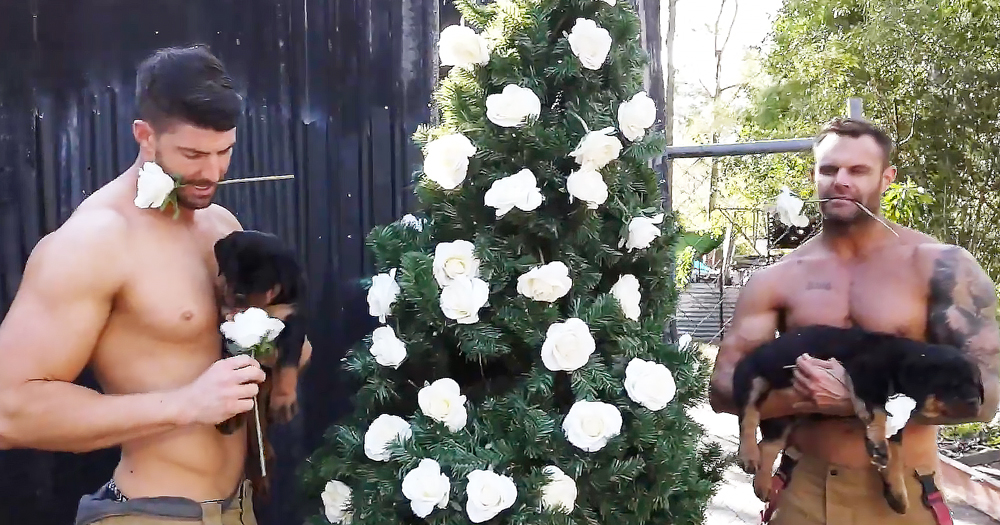Two shirtless Australian firefighters. Between them a Christmas tree adorned with white roses