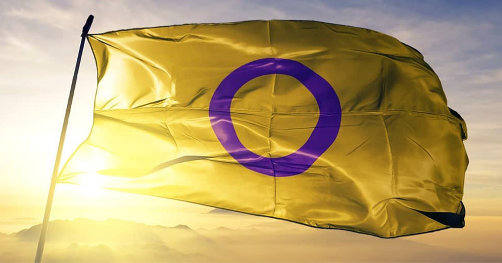 an image of the intersex flag in bright sun to illustrate the states call on the United Nations to protect intersex people